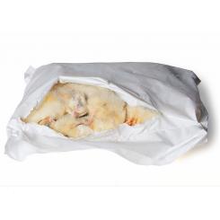 Kylling (Gallina) 1kg