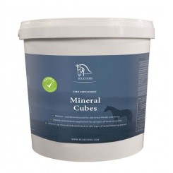 Blue Hors Mineral Cubes