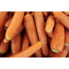 Gulerødder 1 Sæk.
