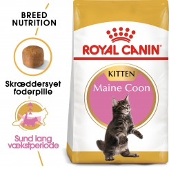 Royal Canin Maine Coon Kitten 4kg