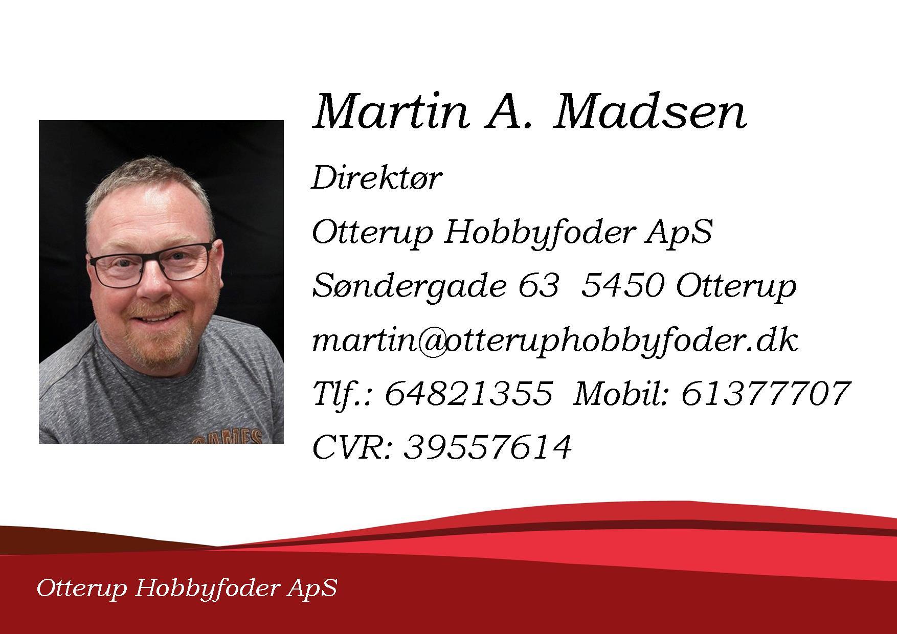 Martin profil