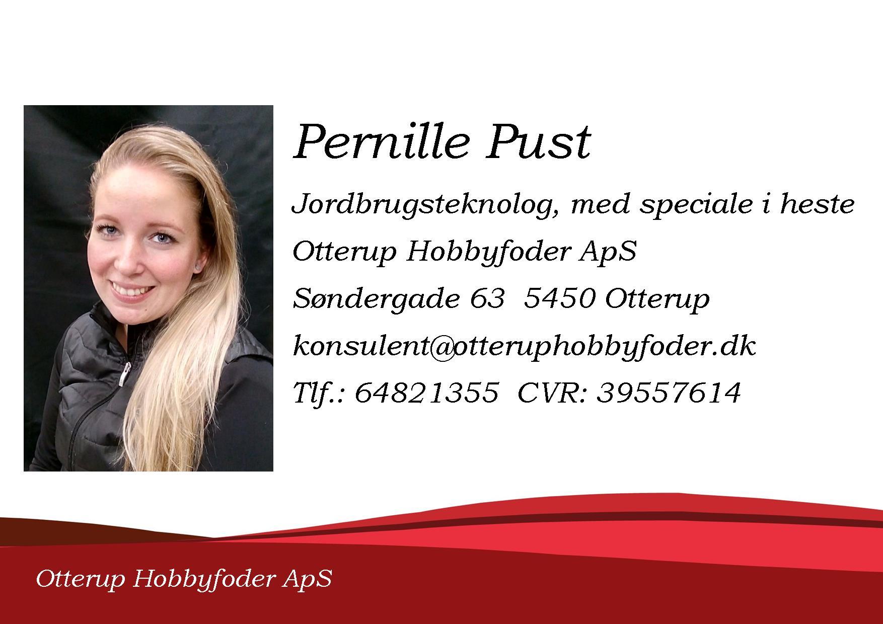 pernille profil